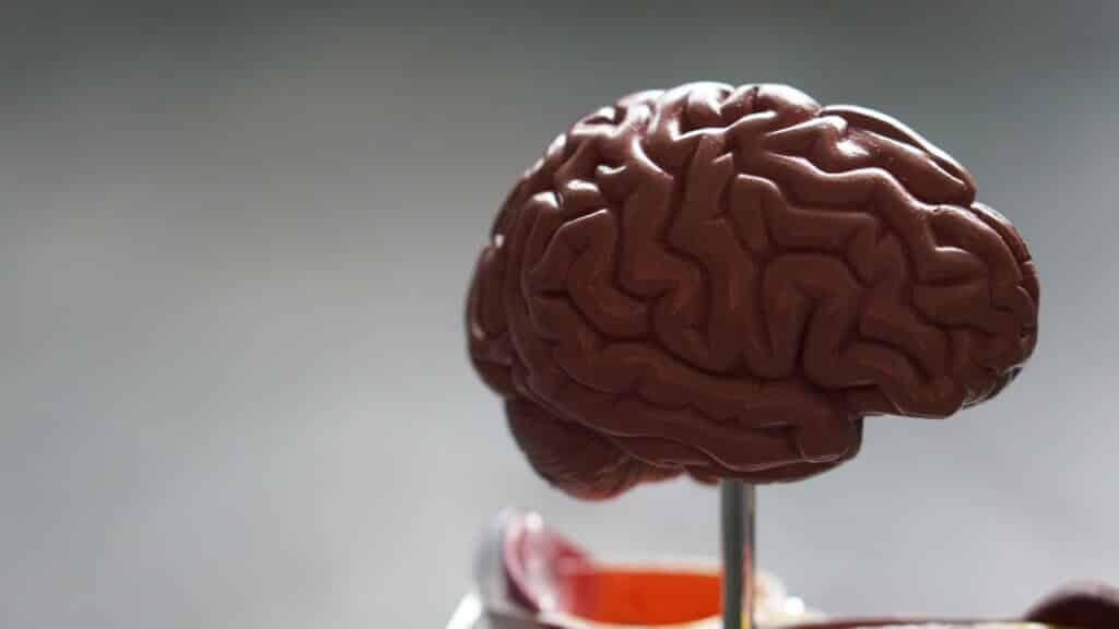ADHD qEEG Brain Map